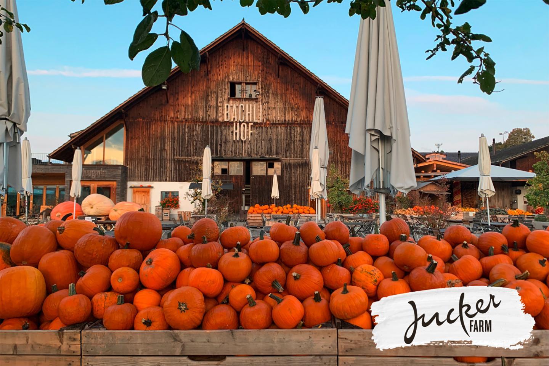 Jucker Farm at the Bürgenstock Resort
